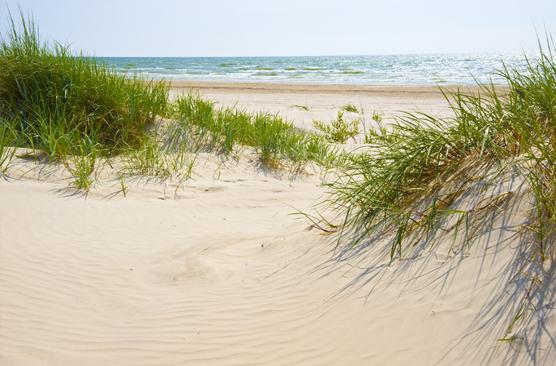 Sonne, See und Strand